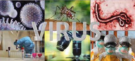 Universidad Nacional de Educación a Distancia (UNED) Curso de Virus Emergentes, del 3 de diciembre de 2018 al 31 de mayo de 2019